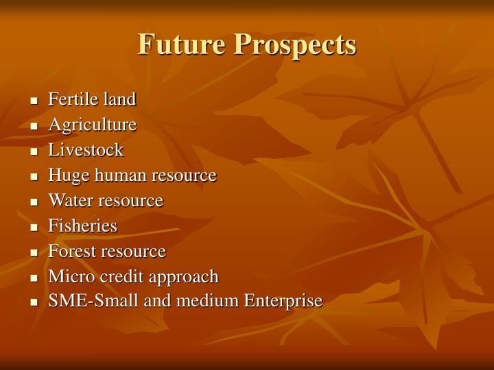 Future Prospects
