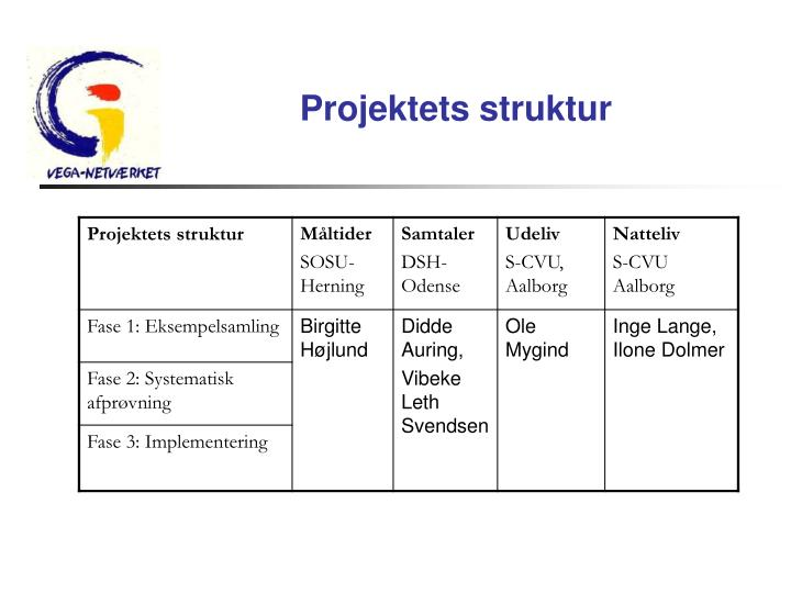 Projektets struktur