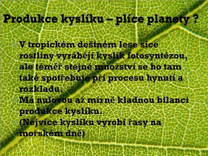 Produkce kyslíku – plíce planety ?