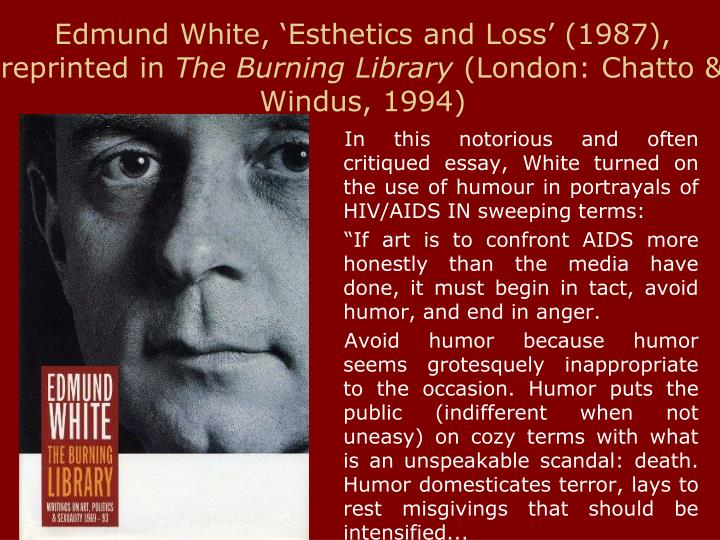 Edmund White, 'Esthetics and Loss' (1987), reprinted in