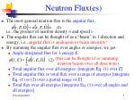neutron flux es