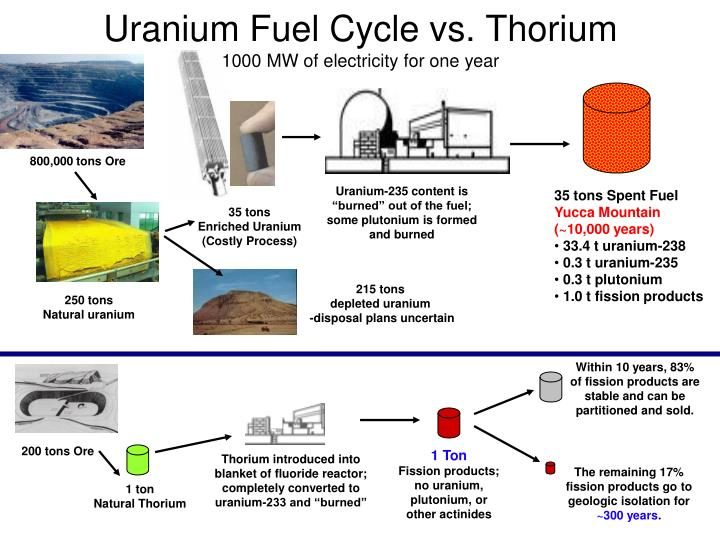 Uranium Fuel Cycle vs. Thorium