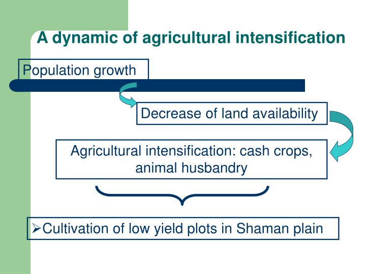 A dynamic of agricultural intensification