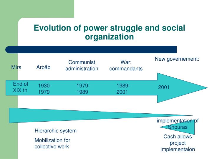Evolution of power struggle and social organization