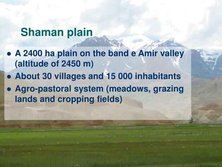 Shaman plain
