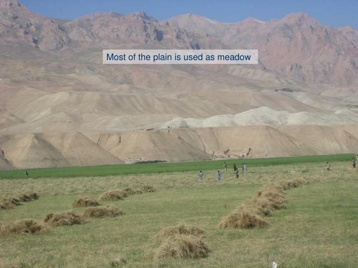 Most of the plain is used as meadow