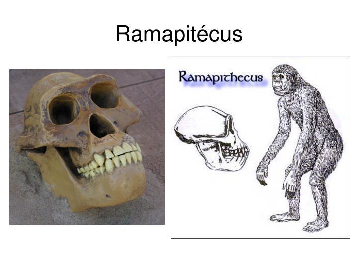 Ramapitécus