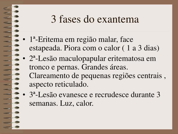 3 fases do exantema