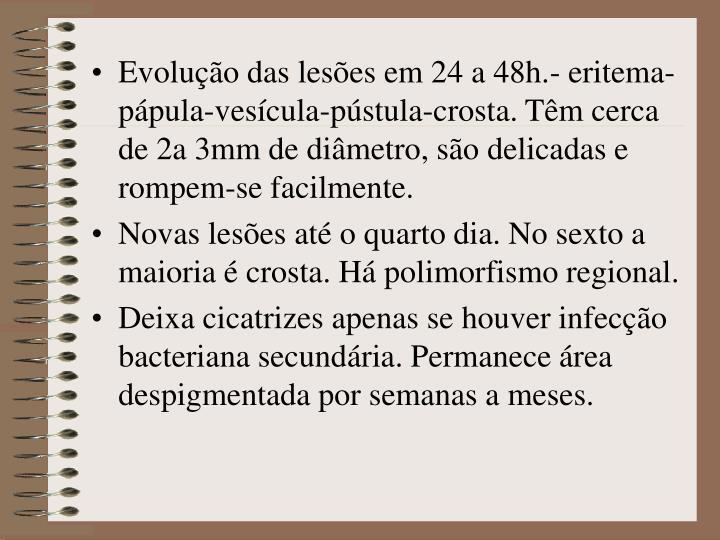 Evolução das lesões em 24 a 48h.- eritema-pápula-vesícula-pústula-crosta. Têm cerca de 2a 3mm de diâmetro, são delicadas e rompem-se facilmente.