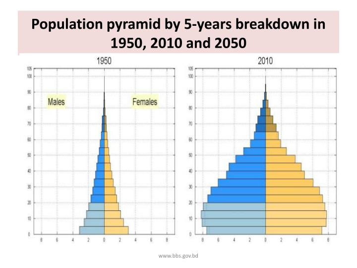 Population pyramid by 5-years breakdown in 1950, 2010 and 2050