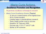 marie curie actions7