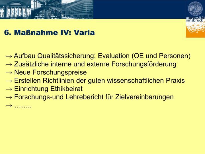 6. Maßnahme IV: Varia
