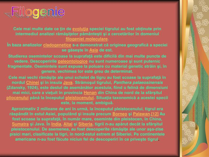 Filogenie