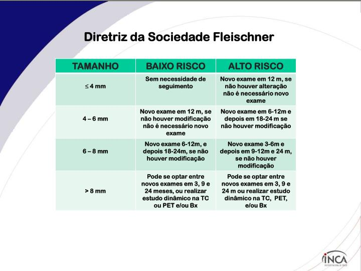 Diretriz da Sociedade Fleischner