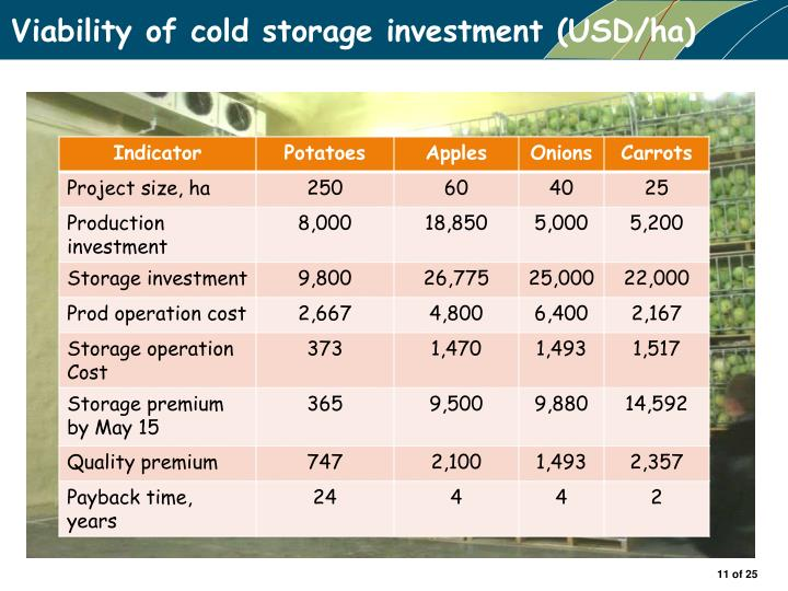 Viability of cold storage investment (USD/ha)