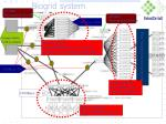 biogrid system