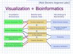 visualization bioinformatics