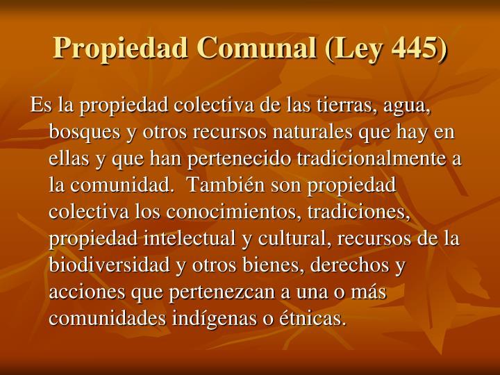 Propiedad Comunal (Ley 445)