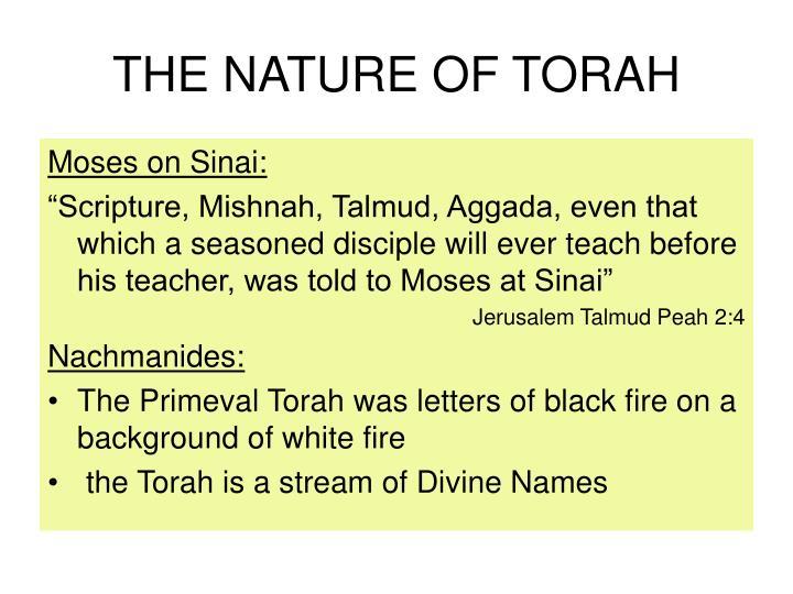 THE NATURE OF TORAH