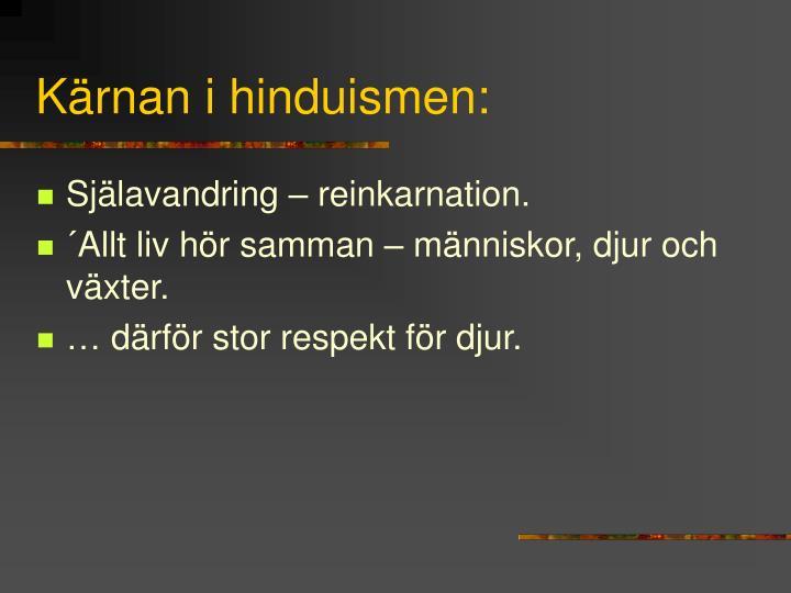Kärnan i hinduismen: