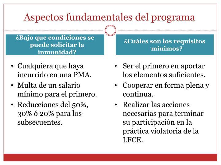 Aspectos fundamentales del programa