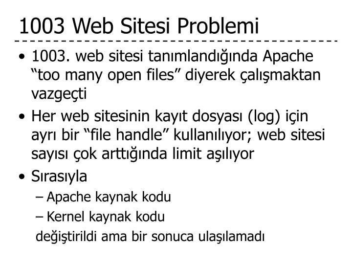 1003 Web Sitesi Problemi