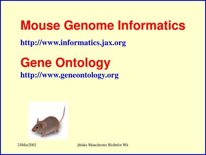 Mouse Genome Informatics