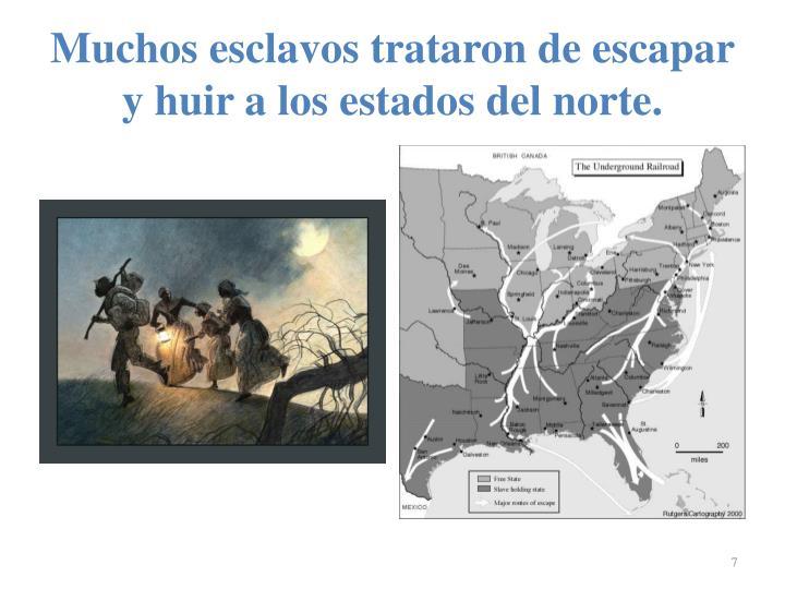Muchos esclavos trataron de escapar y huir a los estados del norte.