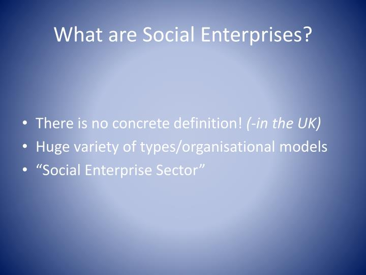 What are social enterprises