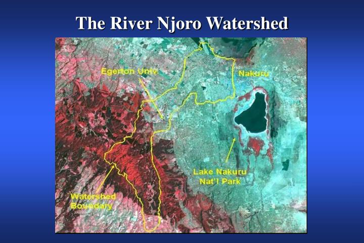 The River Njoro Watershed