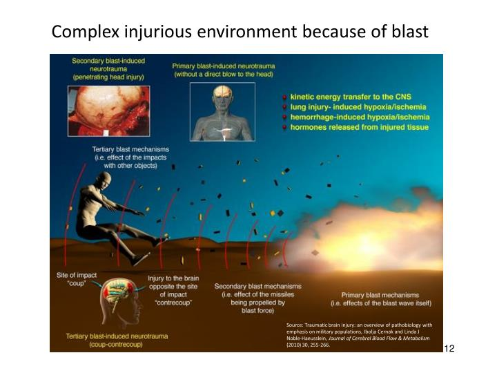 Complex injurious environment because of blast
