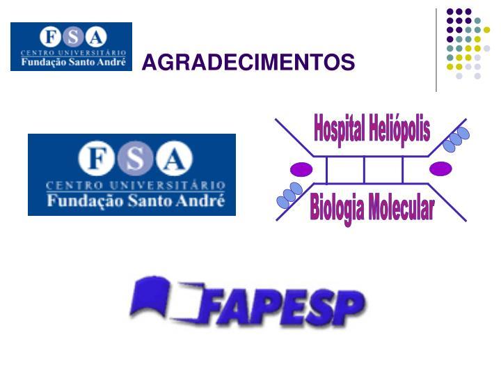 Hospital Heliópolis