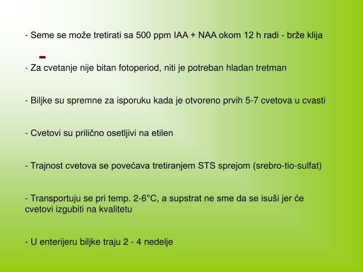 - Seme se može tretirati sa 500 ppm IAA + NAA okom 12 h radi - brže klija