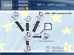 wp 3 exrp process