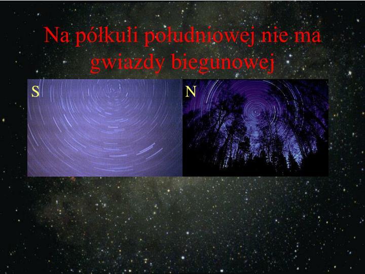 Na półkuli południowej nie ma gwiazdy biegunowej