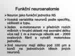 funk n neuroanatomie