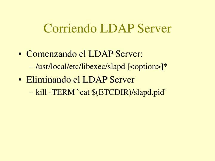 Corriendo LDAP Server