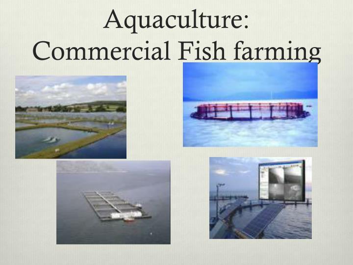 Aquaculture: Commercial Fish farming