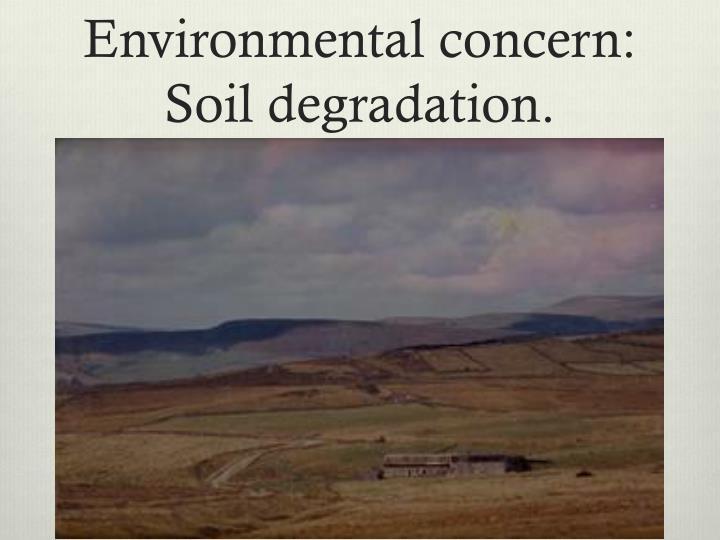 Environmental concern: Soil degradation.