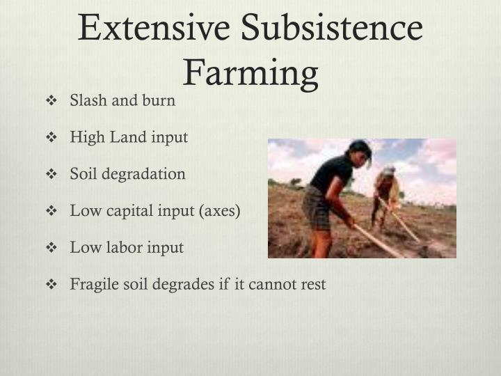 Extensive Subsistence Farming
