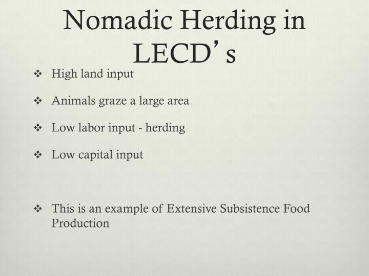 Nomadic Herding in LECD