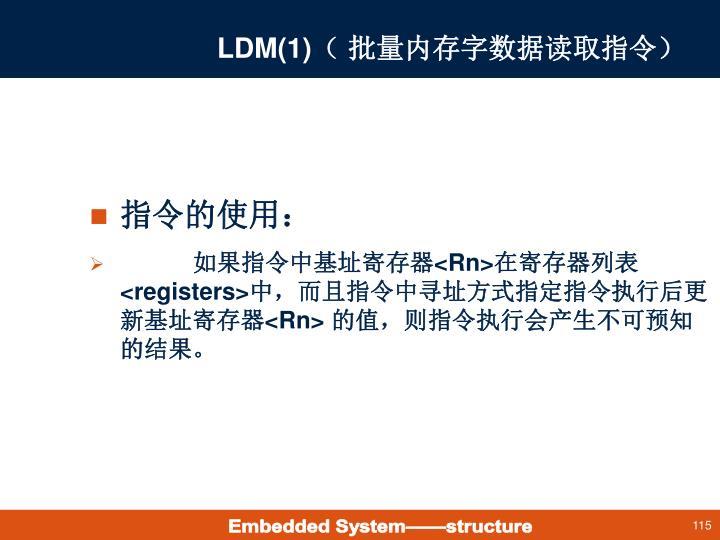 LDM(1)