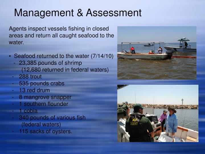 Management & Assessment