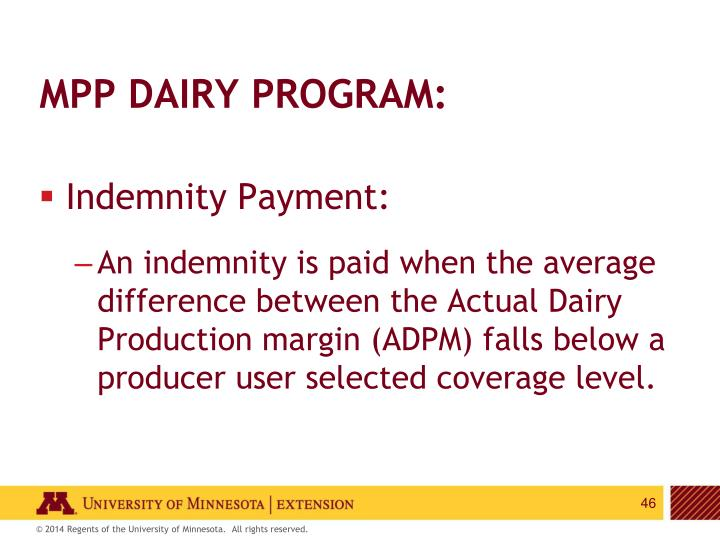 MPP Dairy Program:
