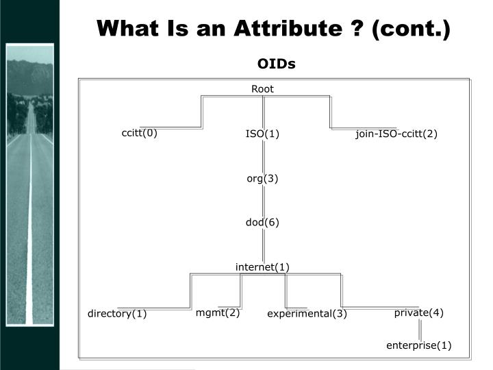 What Is an Attribute ? (cont.)
