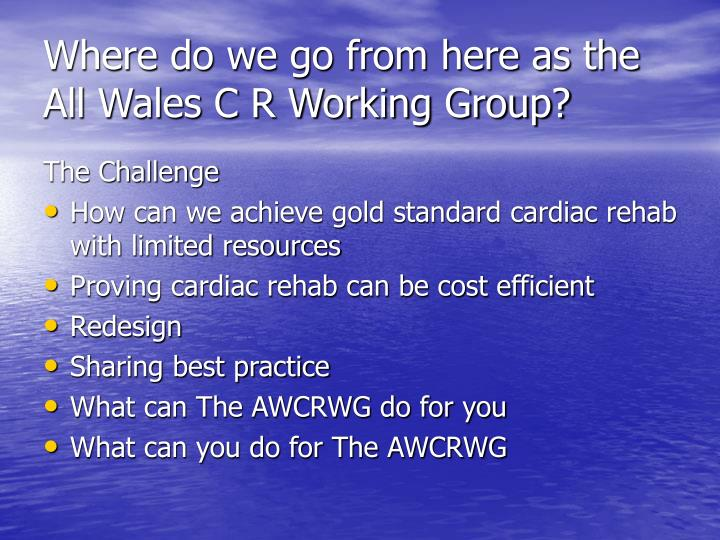 Where do we go from here as the All Wales C R Working Group?