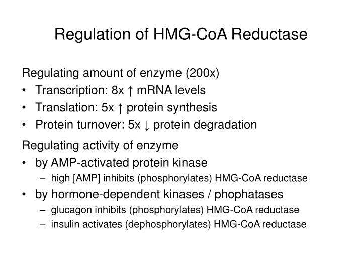 Regulation of HMG-CoA Reductase
