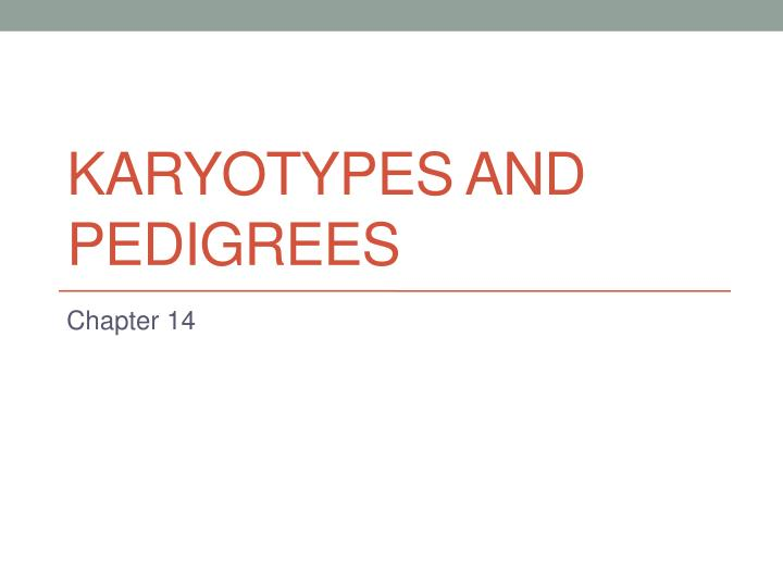 Karyotypes and pedigrees