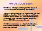 how did codis begin