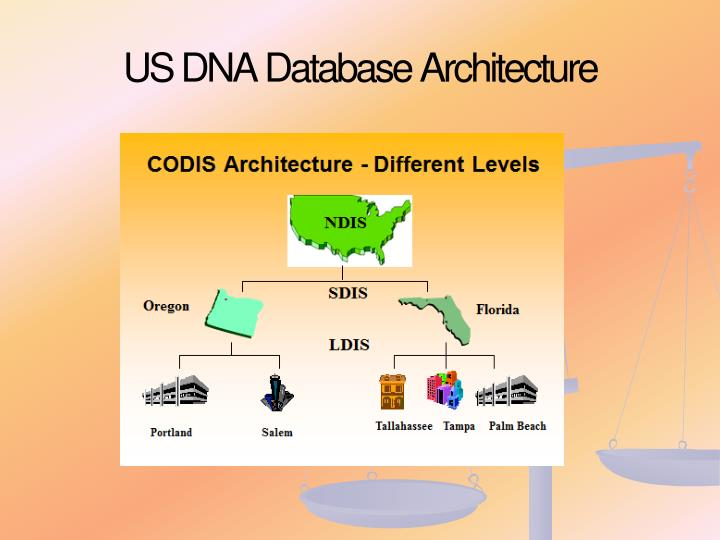 US DNA Database Architecture